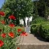 huis-broeckmeulen-tuin-07