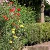 huis-broeckmeulen-tuin-15